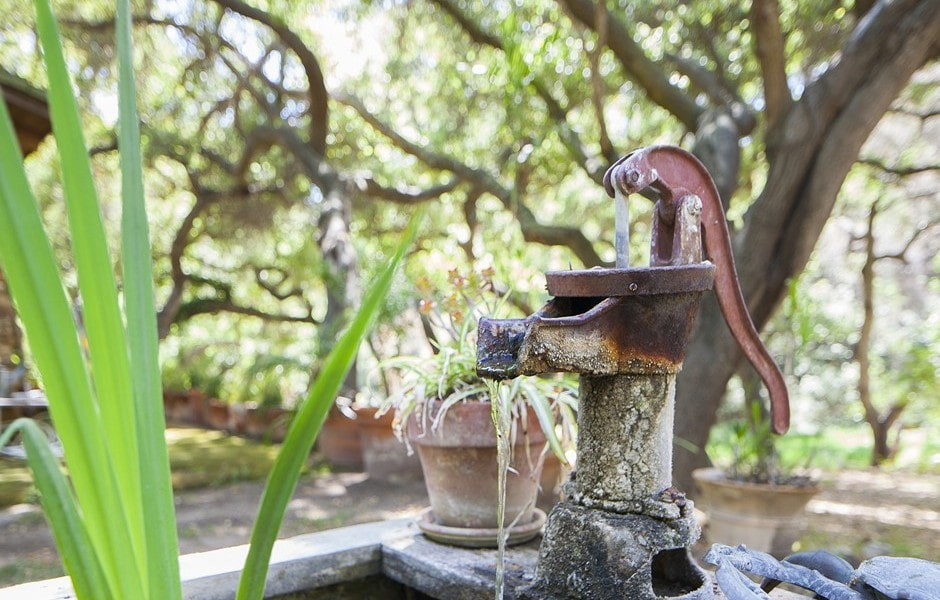 This is a close look at the vintage deep well hand water pump adorned with a potted plant on the side. Image courtesy of Toptenrealestatedeals.com.