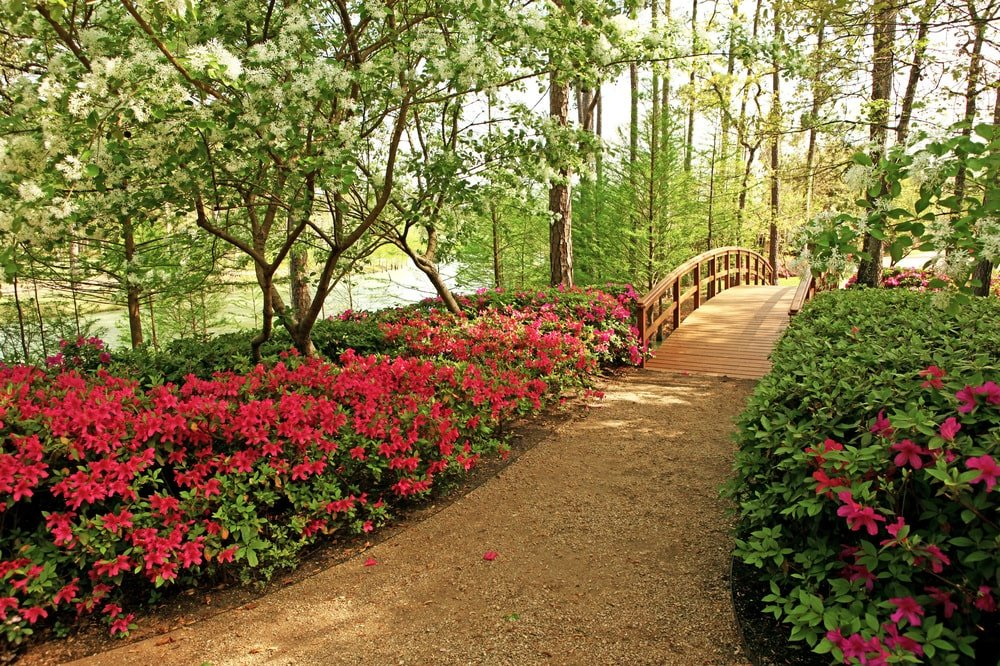 This is the azalea garden of the property that is open to the public every spring. Image courtesy of Toptenrealestatedeals.com.