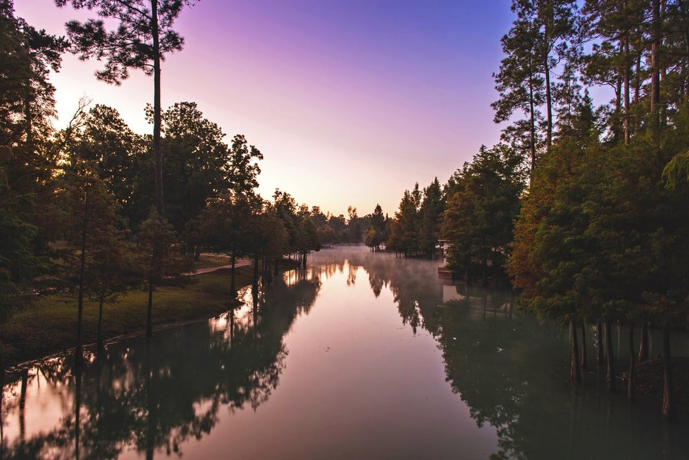 This is a look at the vast lake of the property surrounded by tall trees. Image courtesy of Toptenrealestatedeals.com.
