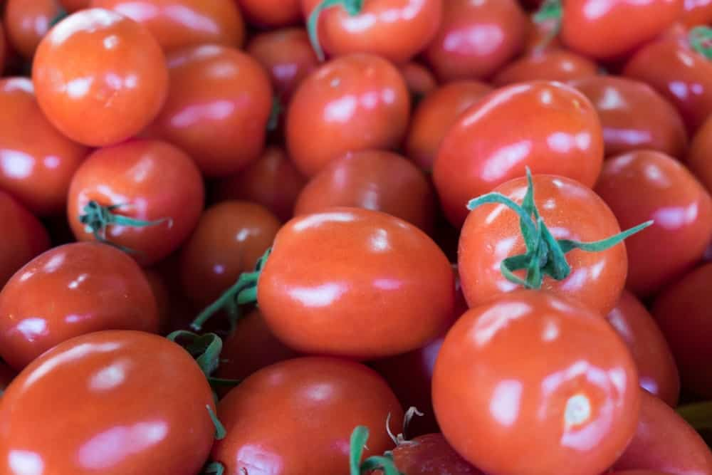 Enchantment tomatoes