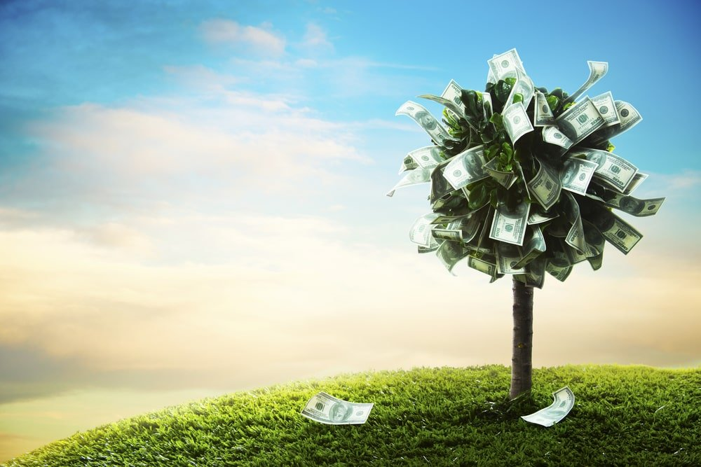 An image of a tree with money leaves.