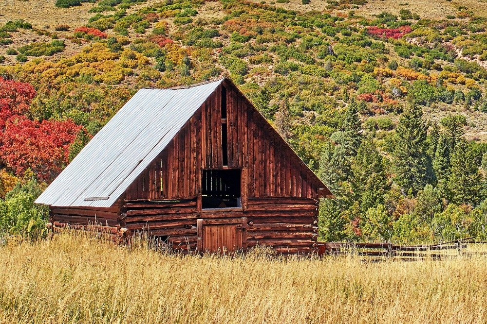 A small rustic structure situated on the property's open field. Image courtesy of Toptenrealestatedeals.com.