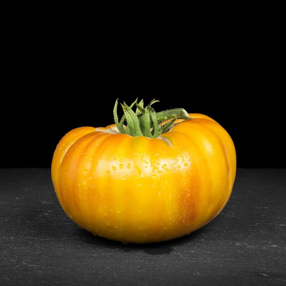 Hillbilly tomato against a black background.