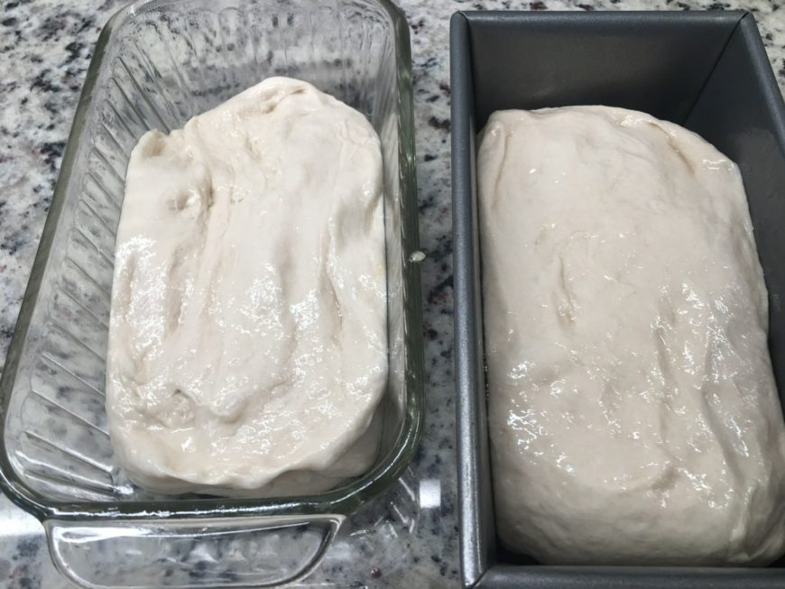 A dough divided into two equal pieces.