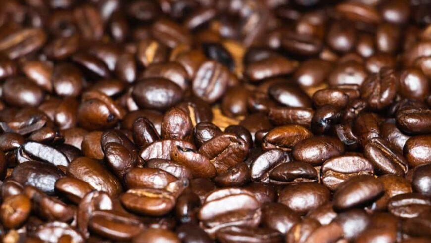 Jamaican Blue Mountain beans