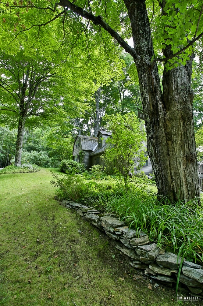 This is a look at the house from the vatage of the landscape that has tall mature trees, grass lawns and shrubs adorned with small rocks to form planters. Image courtesy of Toptenrealestatedeals.com.