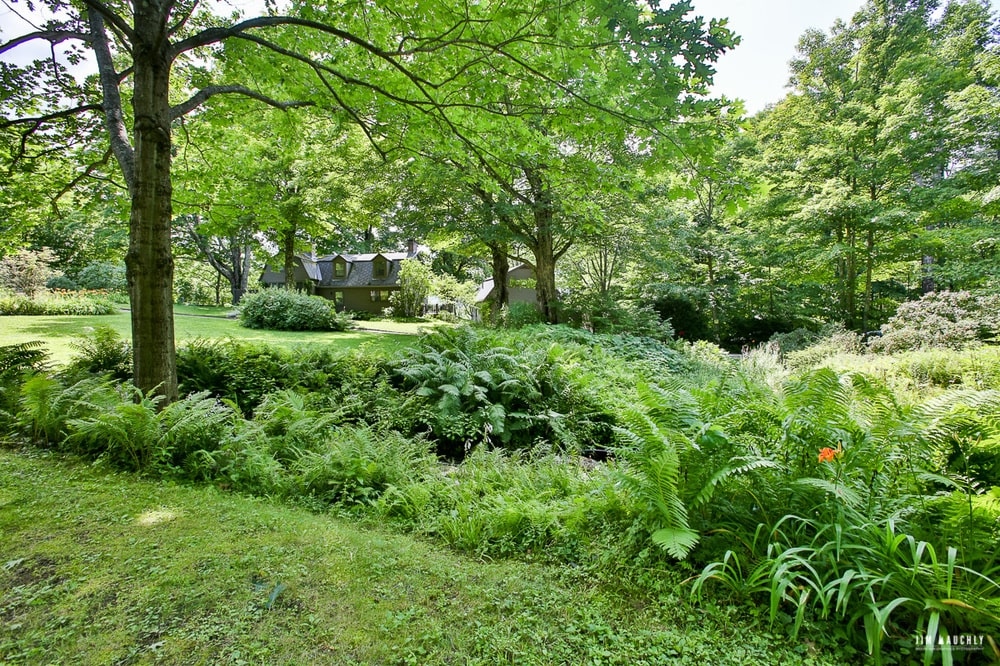 This is a look at the thick foliage of trees and shrubs surrounding the house. Image courtesy of Toptenrealestatedeals.com.