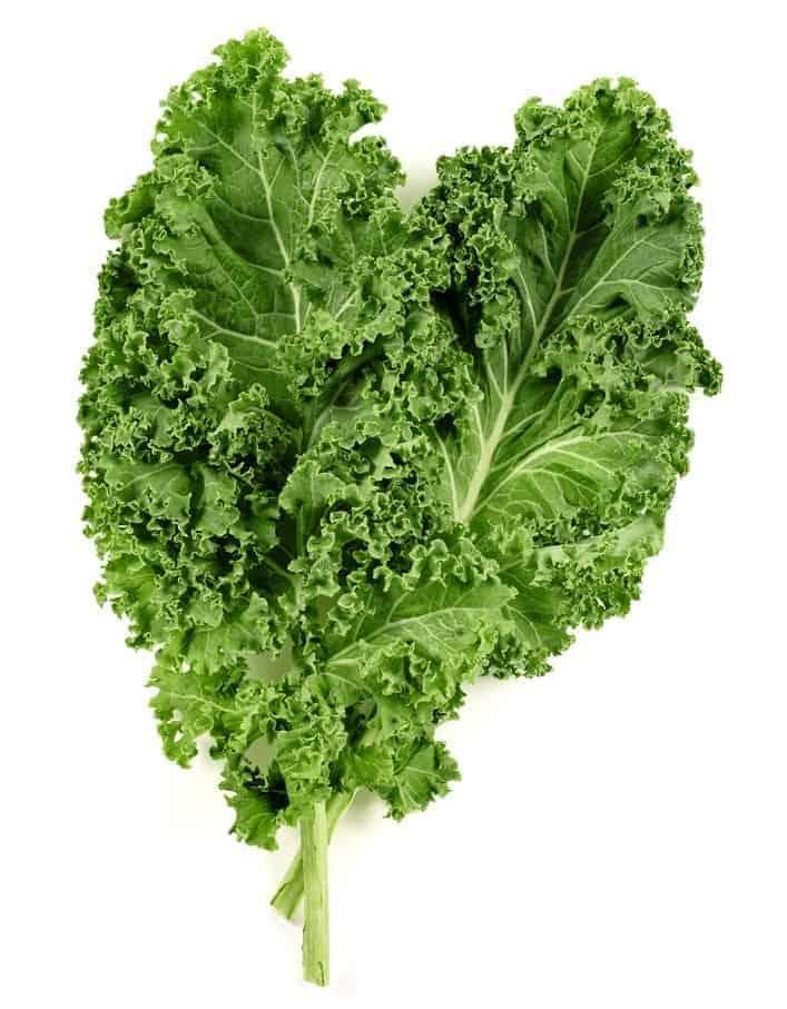 Fresh, dark green-hued kale leaves