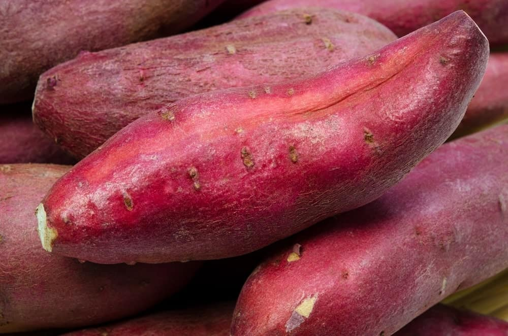 Kumara sweet potatoes
