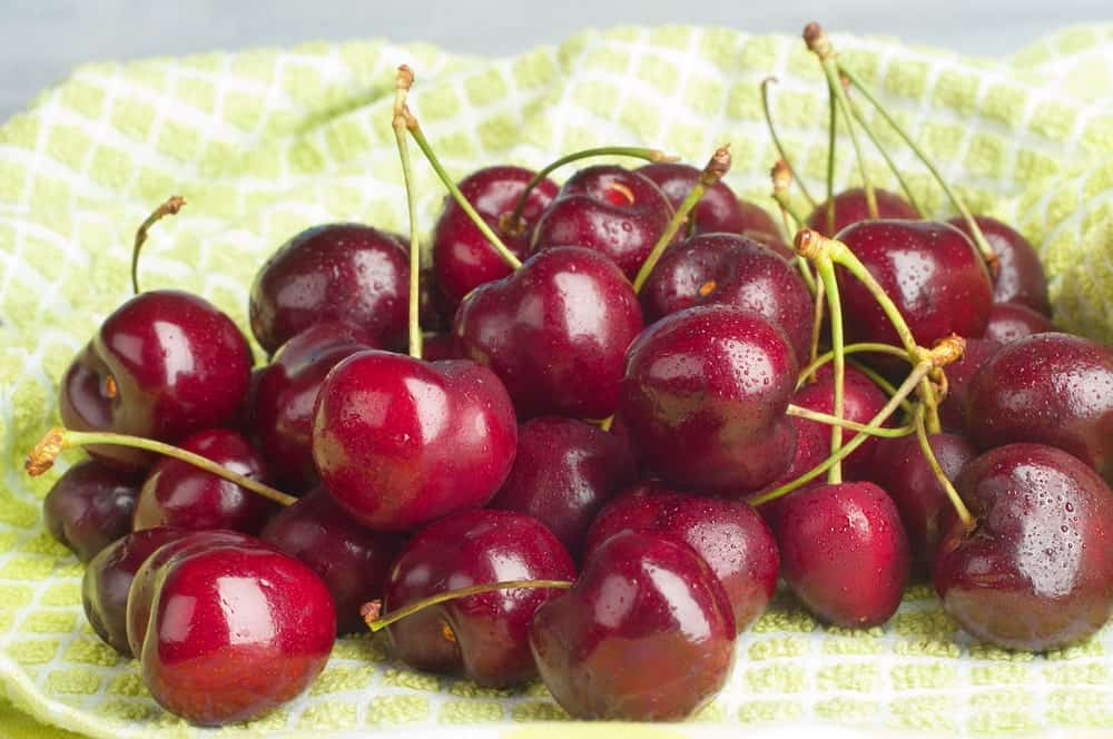 Lapins Cherries on a green checkered cloth.
