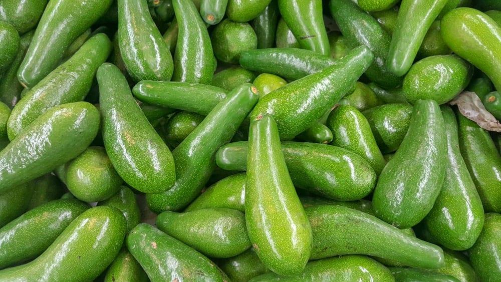 Pinkerton avocados