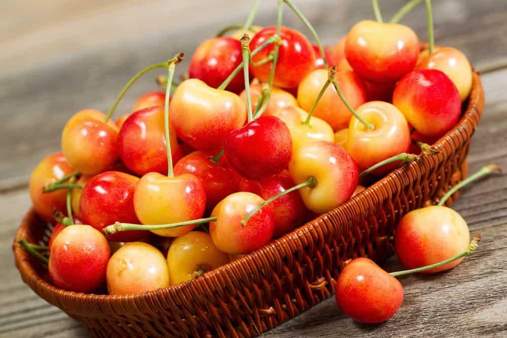 Rainier cherries in a rattan basket.