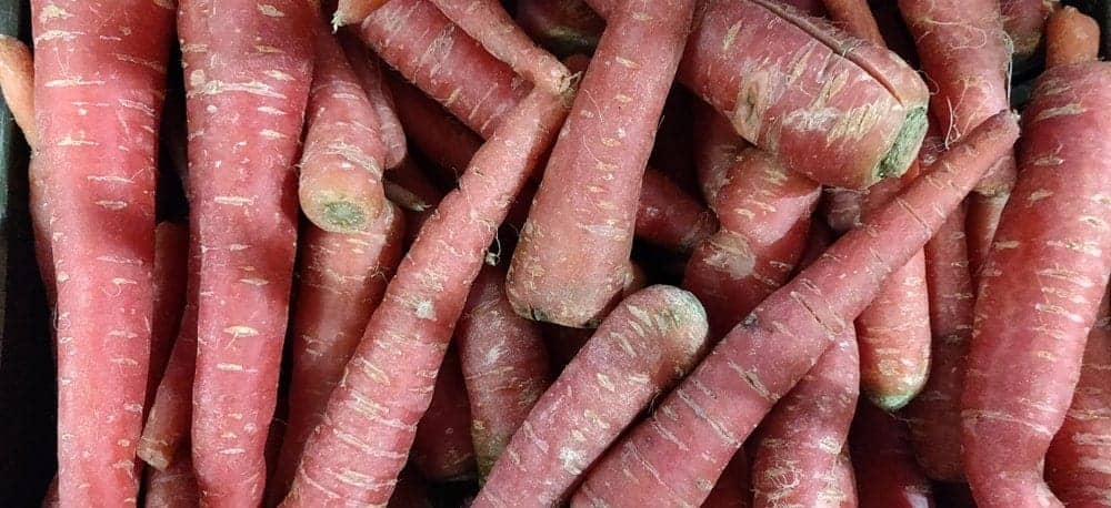 Red-cored carrots