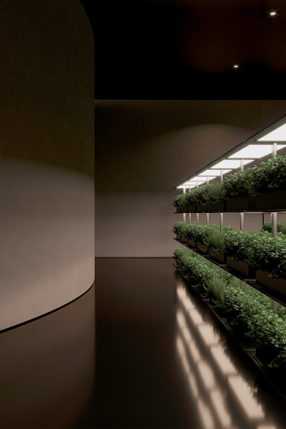 These rows of potted herbs and vegetation are lit with lamps that simulate sunlight.