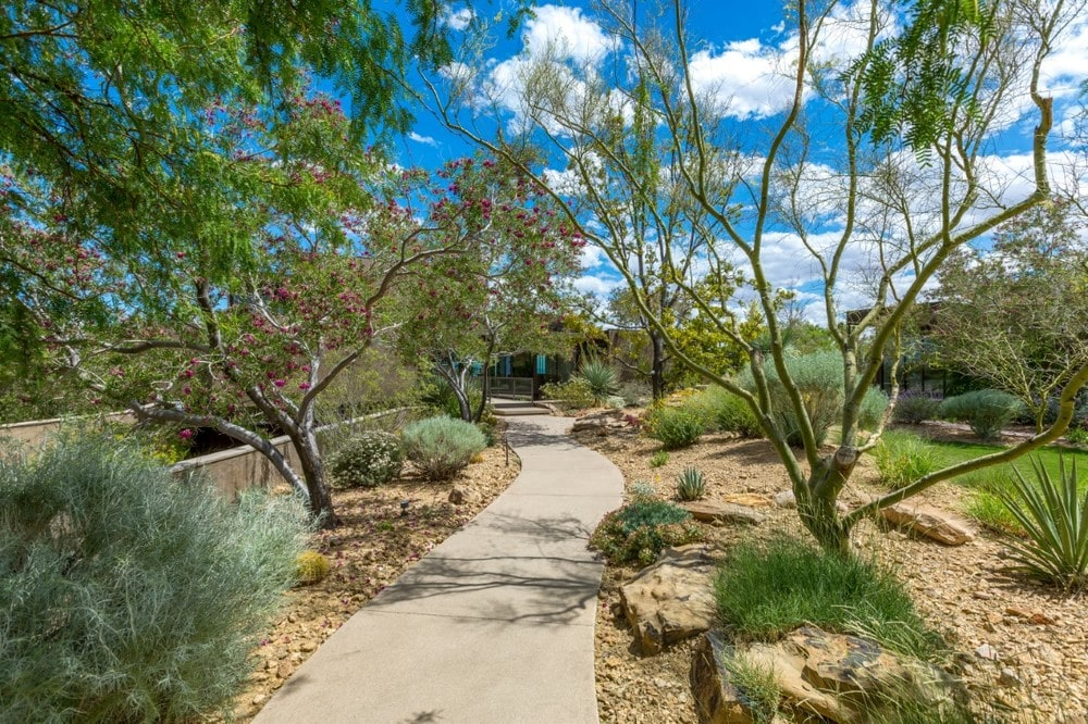 This is a close look at the landscaping surrounding the house. It has a desert-like oasis landscape feel to it traversed with concrete walkways. Image courtesy of Toptenrealestatedeals.com.