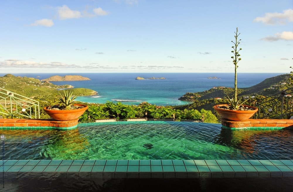 The infinity edge of the pool is flanked with potted plants. Image courtesy of Toptenrealestatedeals.com.