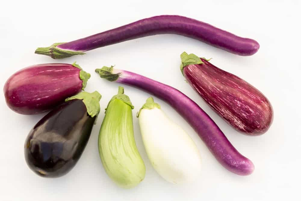 Various types of eggplants against white background.