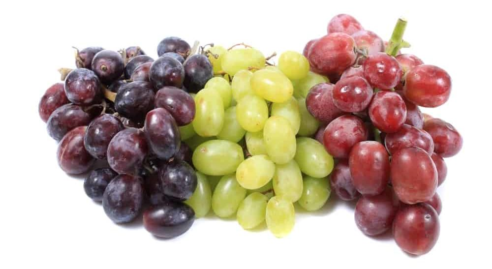 Various types of grapes in multi colors.