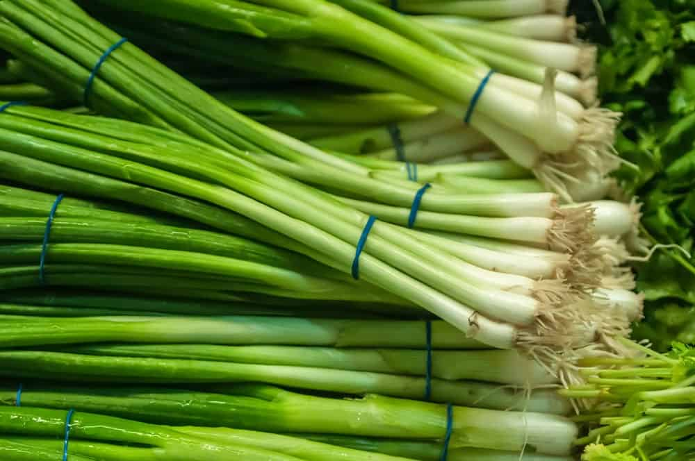 Bundles of green onions