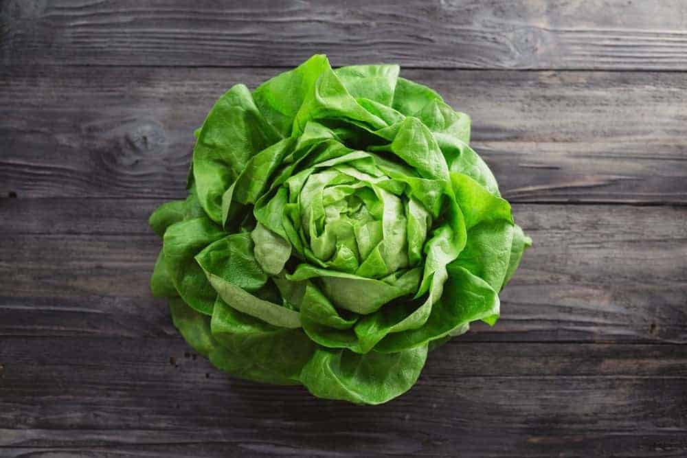 Lettuce head on top of a wood plank table.