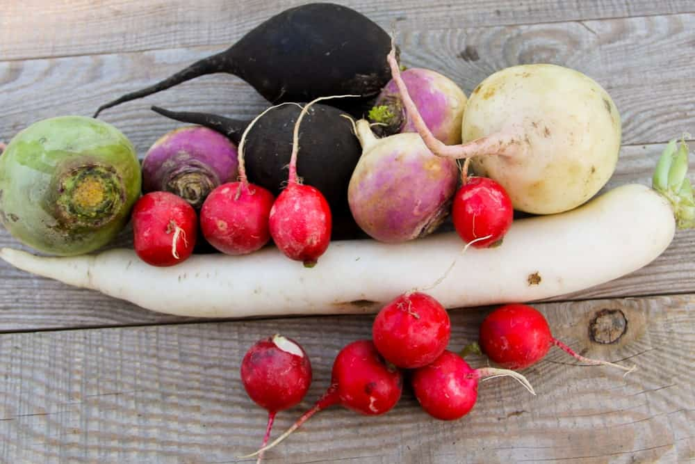 Various types of radishes on a wood plank table.