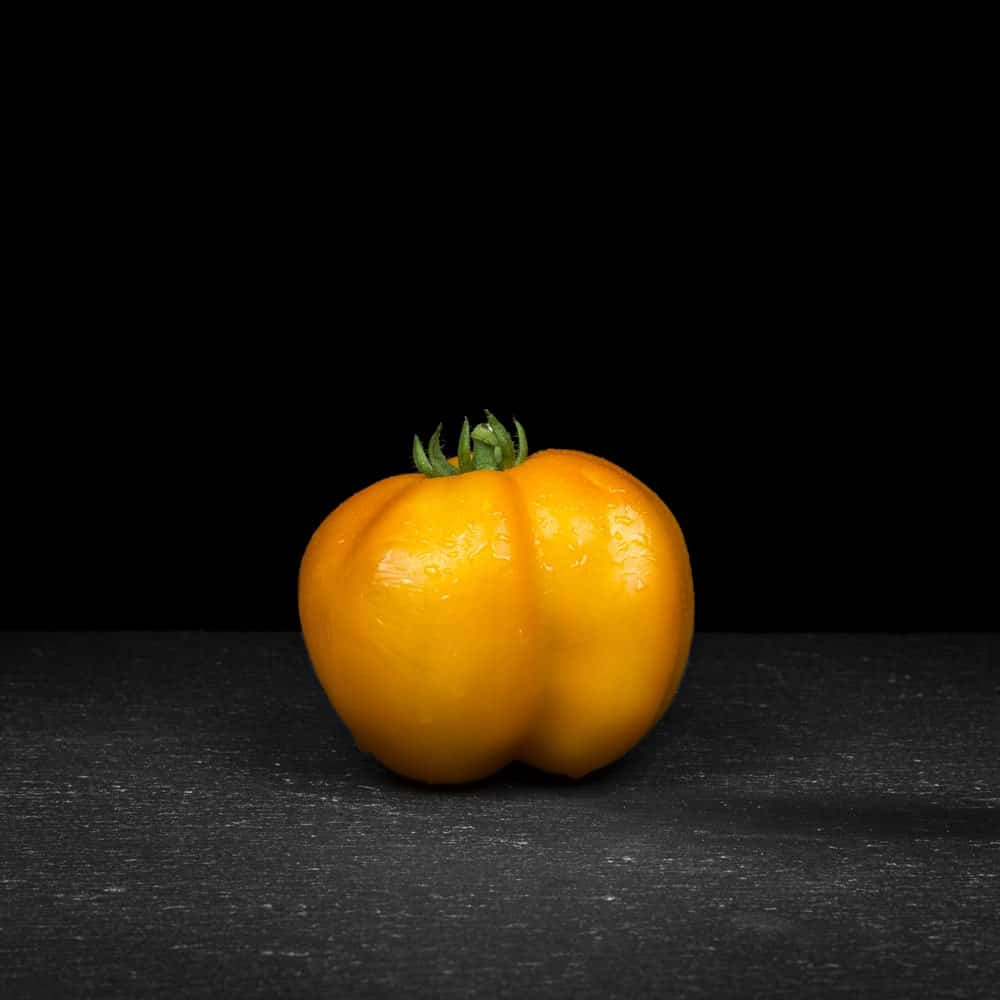 Yellow Stuffer tomato against the black background.