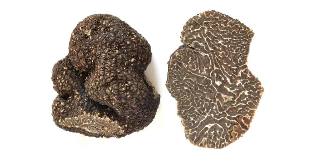 Brumale truffle