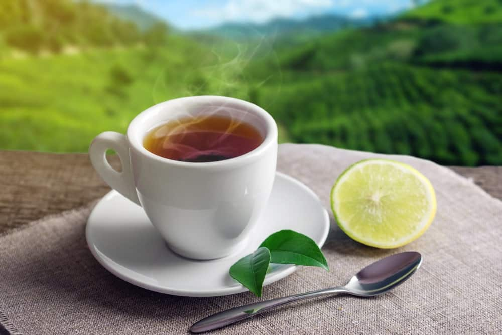A cup of tea and a slice of lemon with the Cameron Highlands as background.