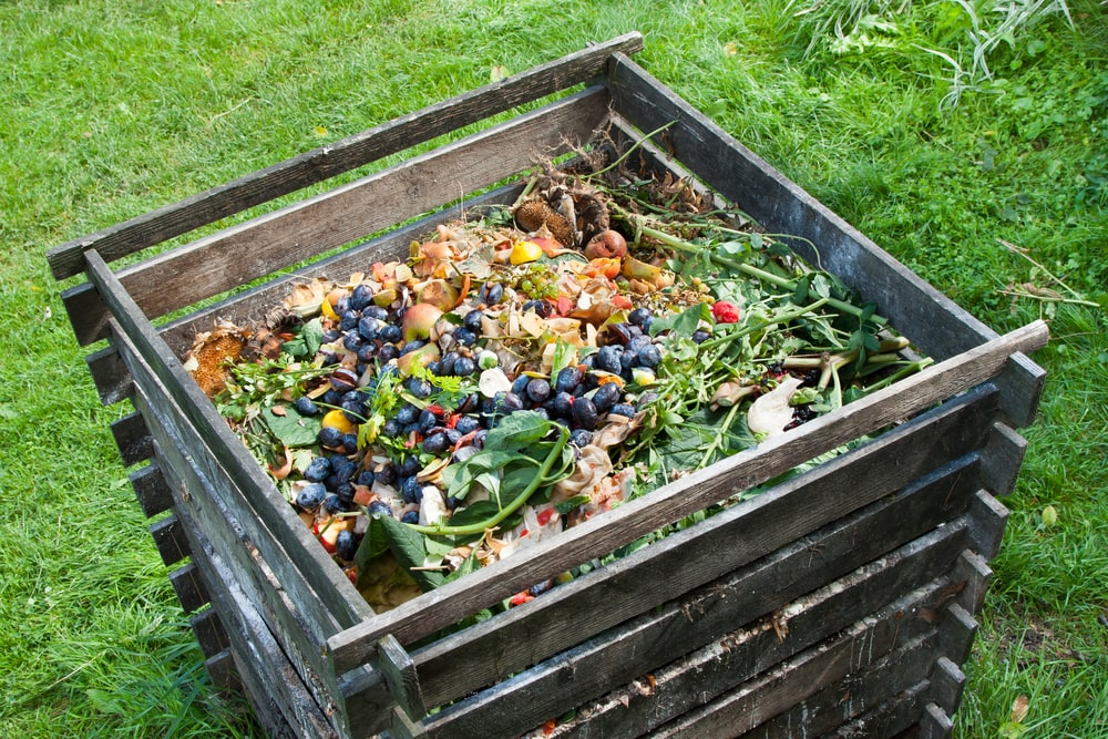 A close look at a compost bin at the garden.
