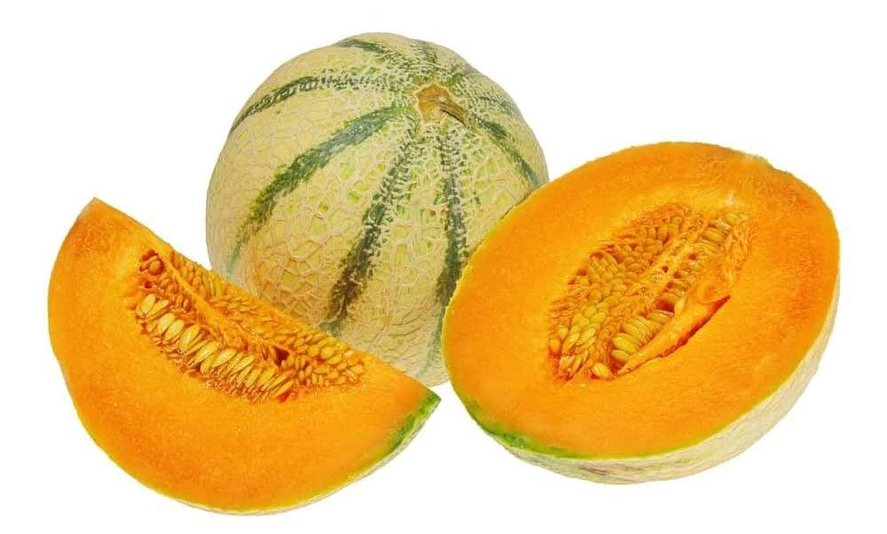 Charentais melon
