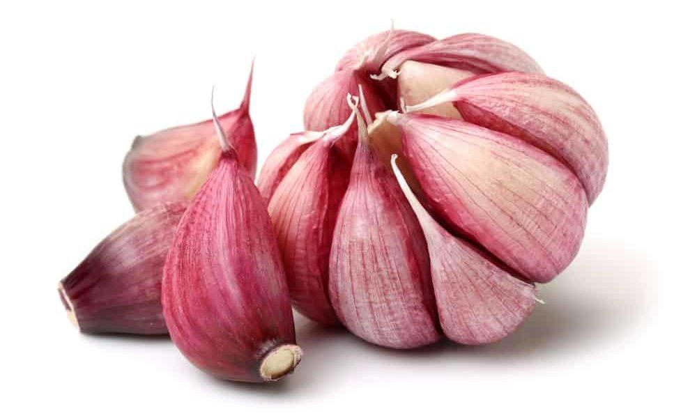 Creole garlic