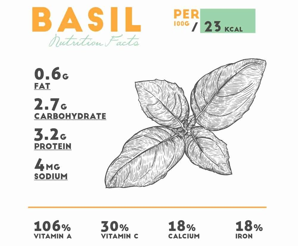 Fresh Basil Nutrition Facts Chart