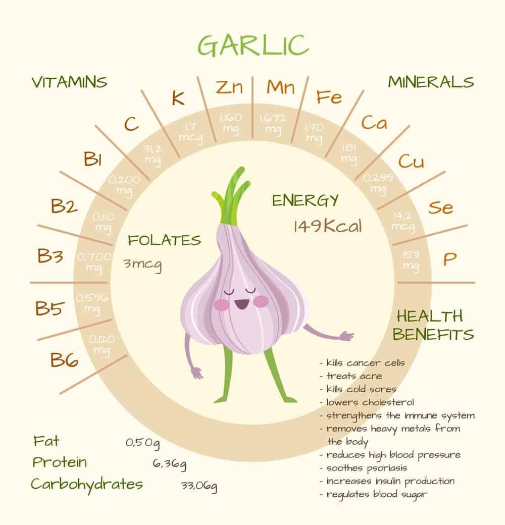 Garlic Nutrition Facts Chart
