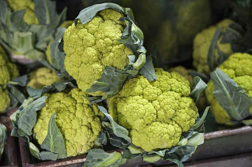 Green cauliflowers