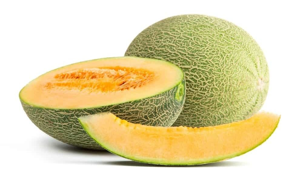 Hami melon