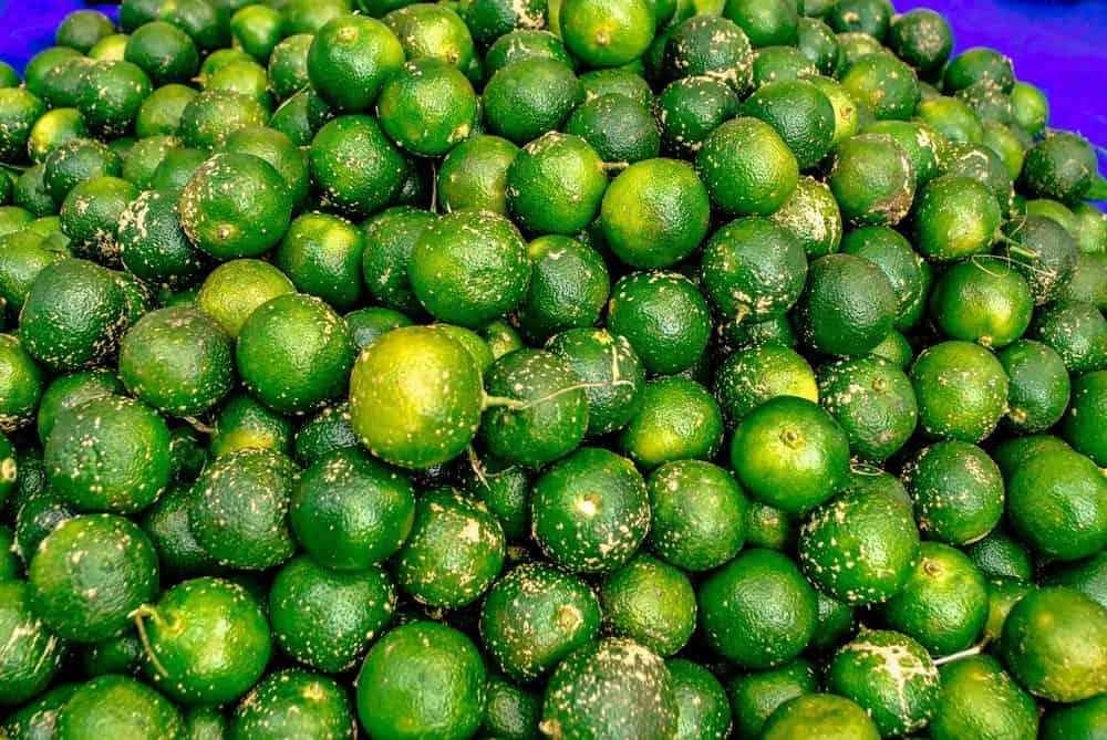 Kalamansi limes