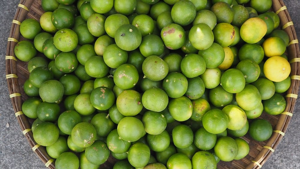 Key limes on a rattan container.