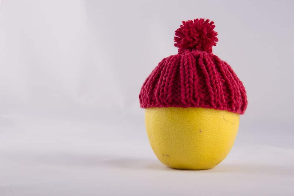 Lemon wearing a red bonnet.