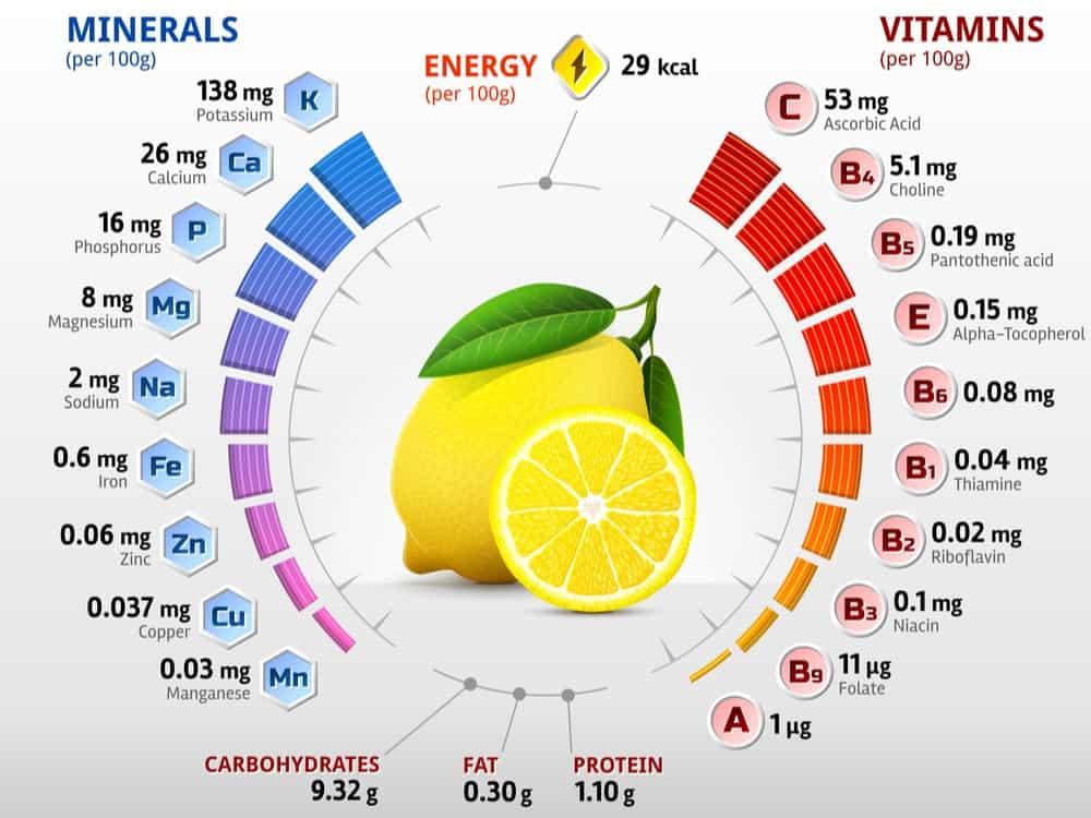 Lemon Nutrition Facts Chart