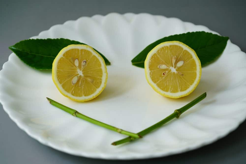A lemon sliced in half showing its seeds with leaves and stems on the white ceramic plate.