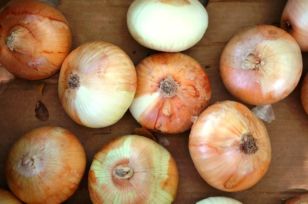 Maui onions on a wooden table.