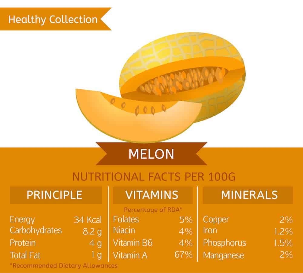 30 Different Types Of Melons Do You Know Them All Cantaloupes are an excellent source of both vitamin a and vitamin c. 30 different types of melons do you