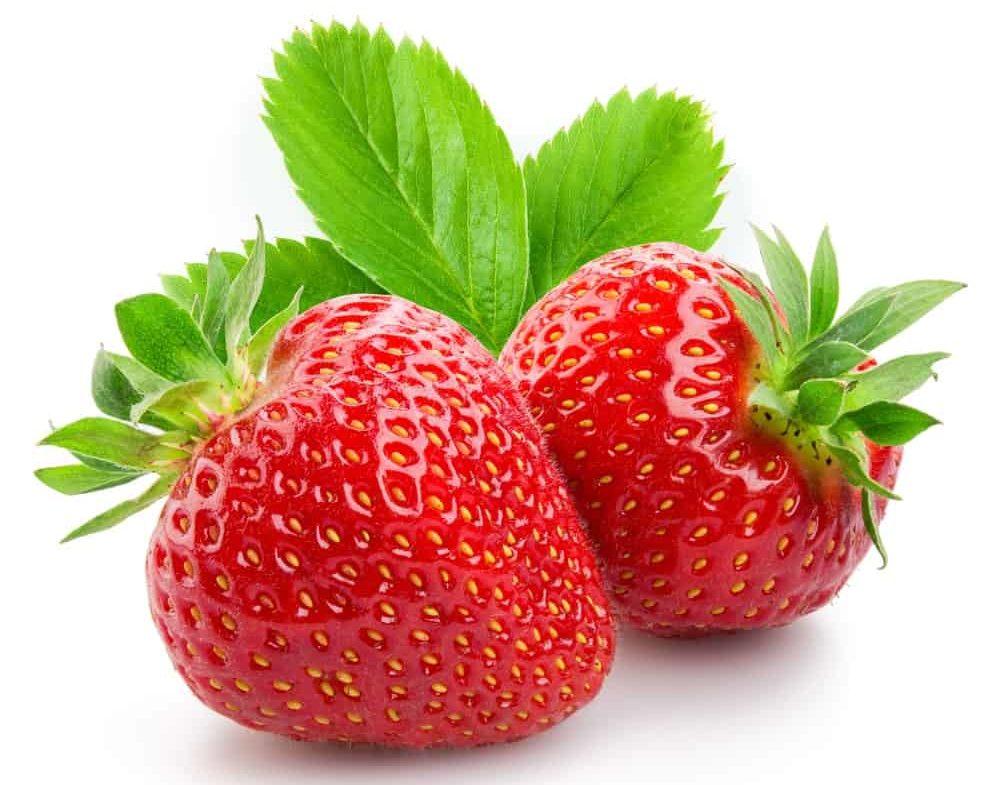 Northeaster strawberries