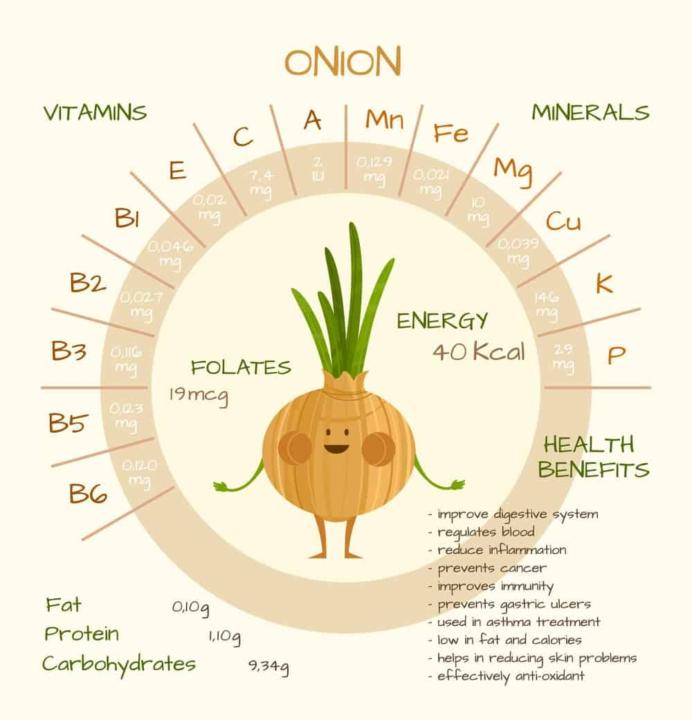 Onion Nutrition Facts Chart