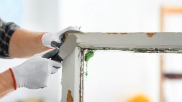 A close look at a worker scraping the paint off an old window frame with the use of a paint scraper.