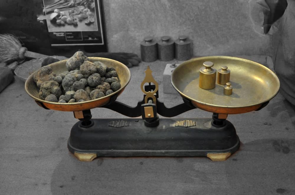 Weighing Spanish black truffles on a vintage scale.