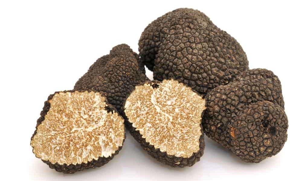 Tuscan truffles