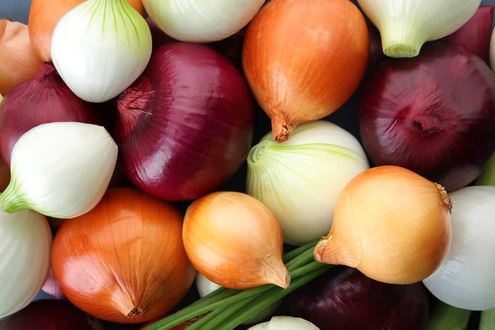A bunch of onions in various kinds.