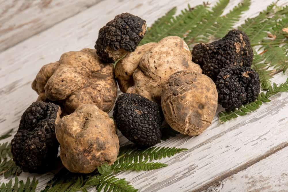 Various types of truffles on a wooden table.