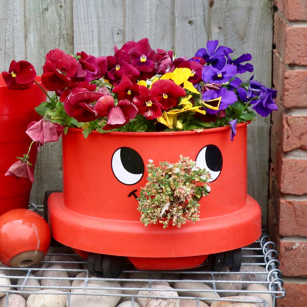An old vacuum cleaner recycled into a flower pot.